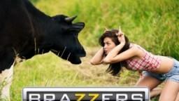 Brazzers online porno TV